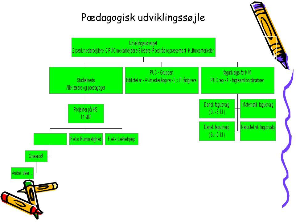 Pædagogisk udviklingssøjle