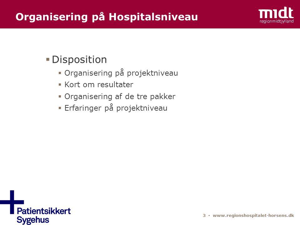 Organisering på Hospitalsniveau
