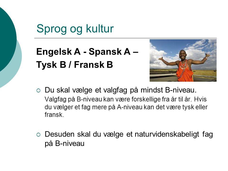 Sprog og kultur Engelsk A - Spansk A – Tysk B / Fransk B
