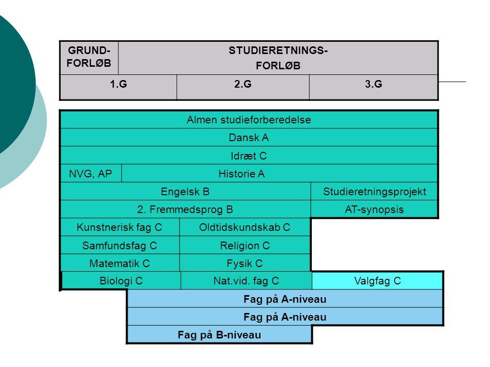 Almen studieforberedelse Dansk A Idræt C NVG, AP Historie A Engelsk B