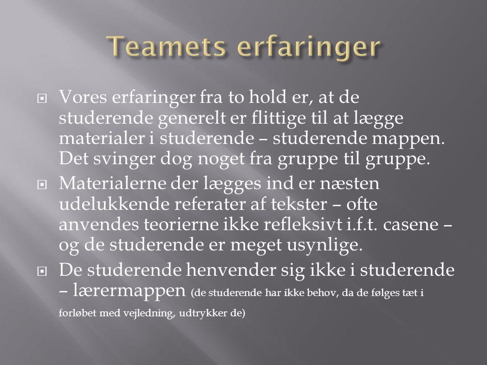 Teamets erfaringer