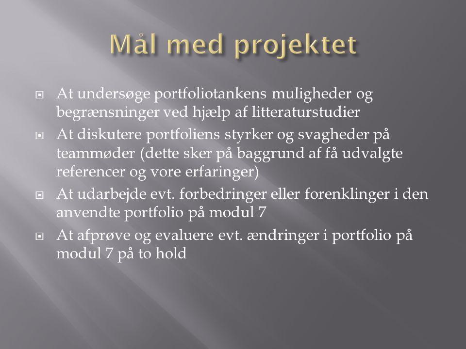 Mål med projektet At undersøge portfoliotankens muligheder og begrænsninger ved hjælp af litteraturstudier.