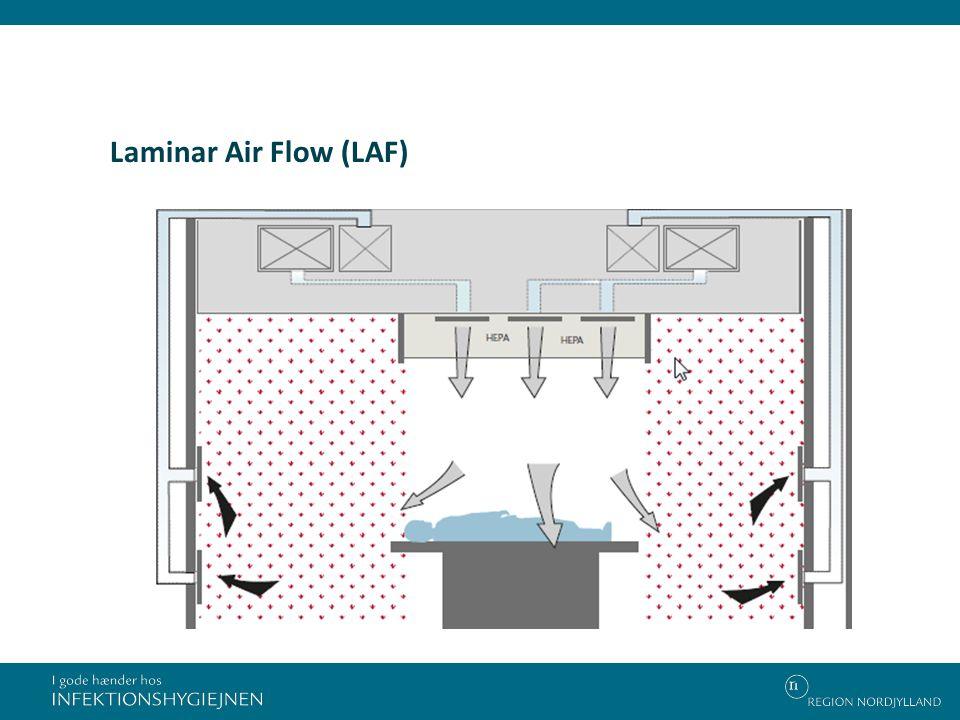 Laminar Air Flow (LAF)