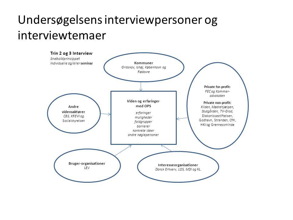 Undersøgelsens interviewpersoner og interviewtemaer