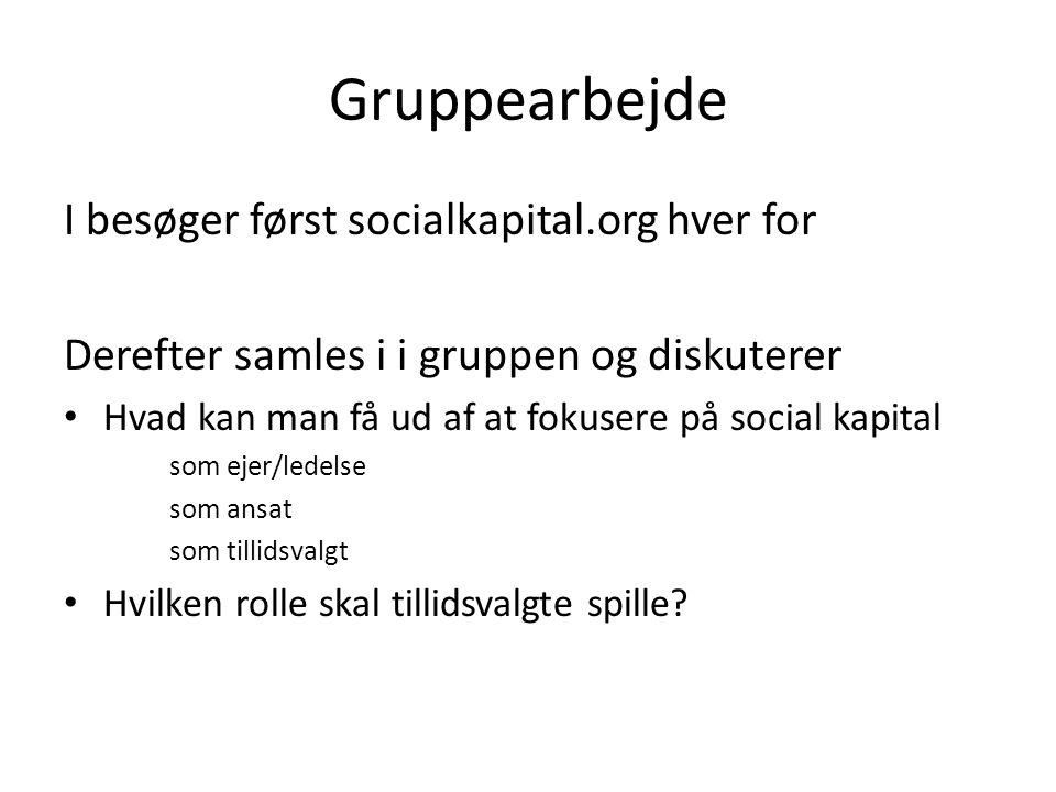 Gruppearbejde I besøger først socialkapital.org hver for