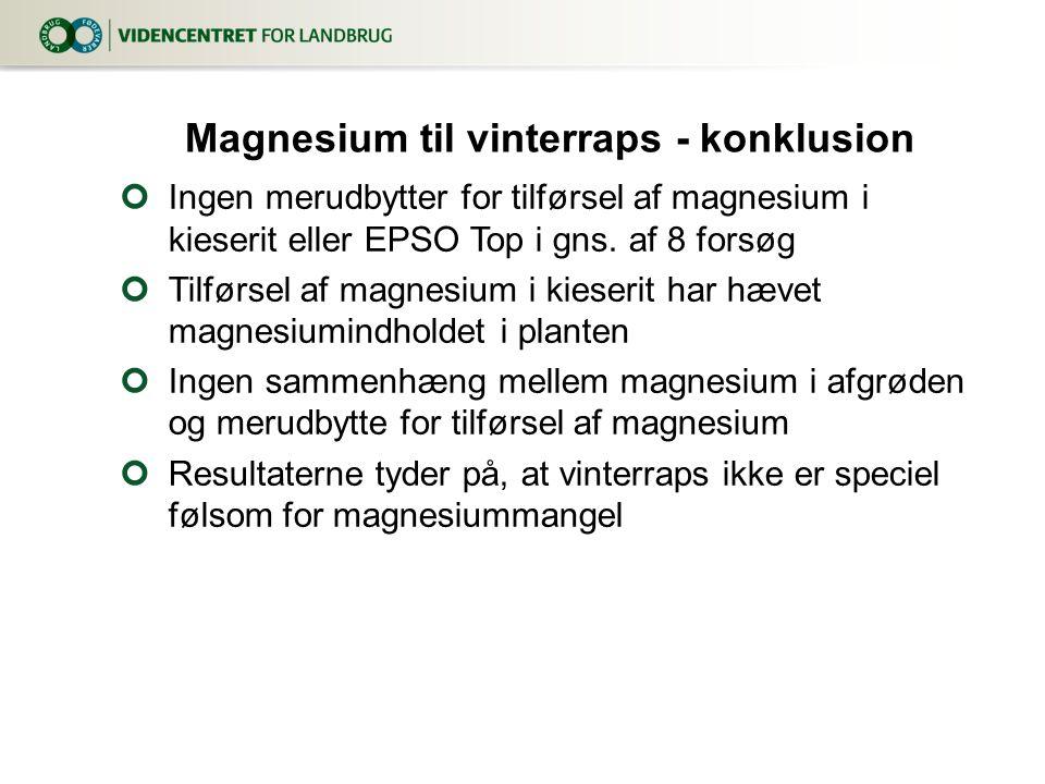 Magnesium til vinterraps - konklusion
