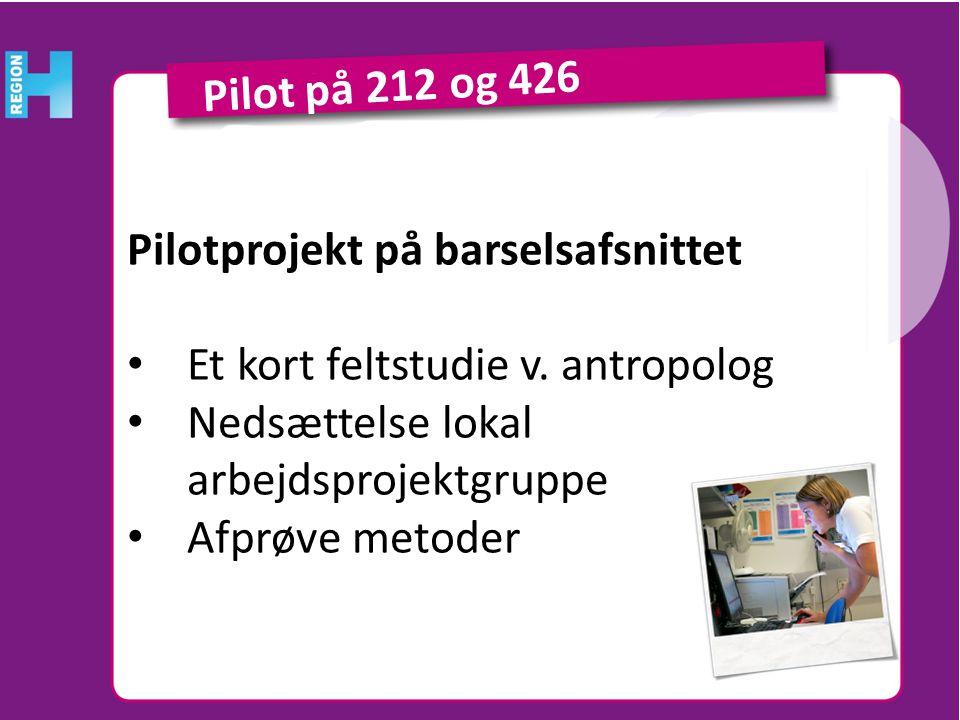 Pilot på 212 og 426 Pilotprojekt på barselsafsnittet. Et kort feltstudie v. antropolog. Nedsættelse lokal arbejdsprojektgruppe.