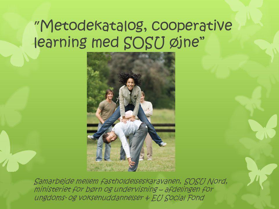 Metodekatalog, cooperative learning med SOSU øjne
