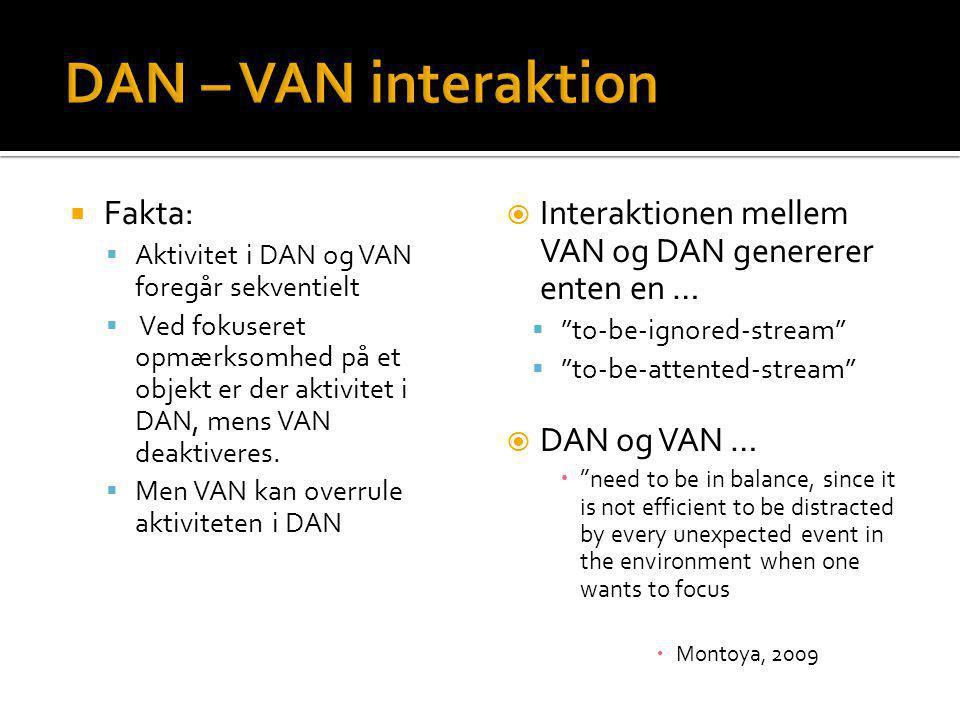 DAN – VAN interaktion Fakta: