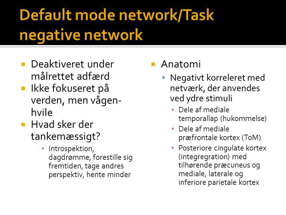 Default mode network/Task negative network