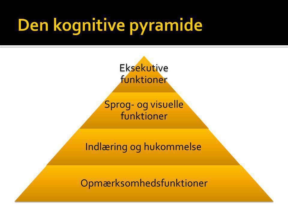 Den kognitive pyramide