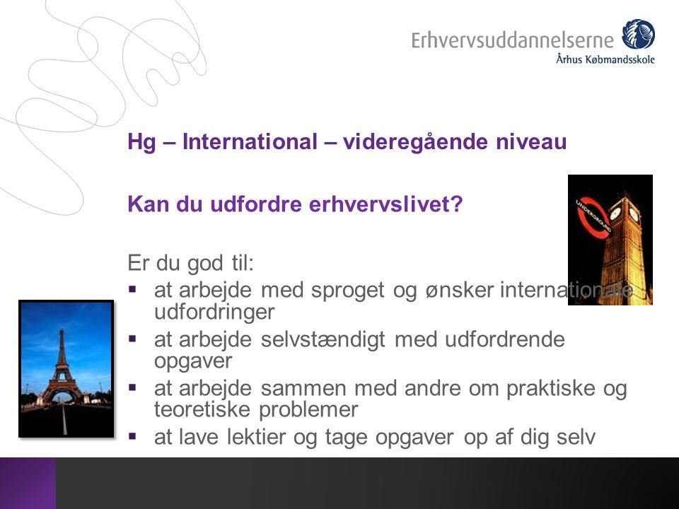 Hg – International – videregående niveau