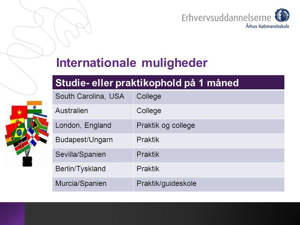 Internationale muligheder