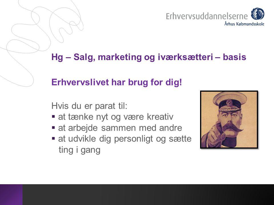 Hg – Salg, marketing og iværksætteri – basis