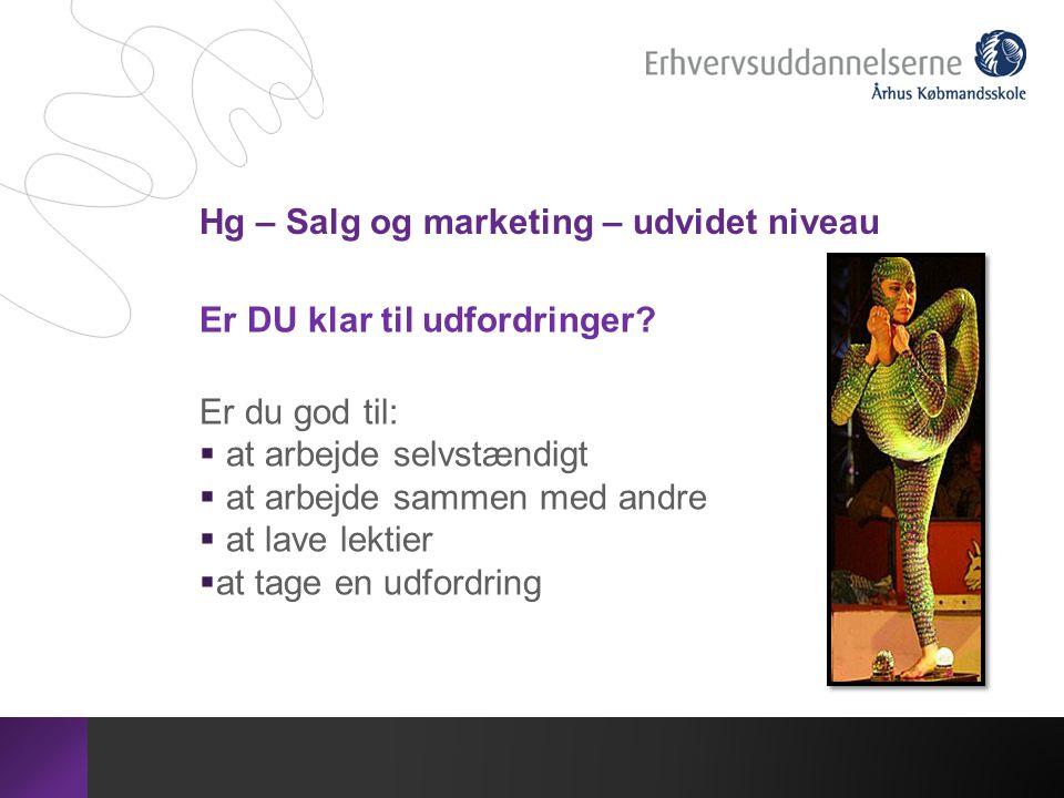 Hg – Salg og marketing – udvidet niveau