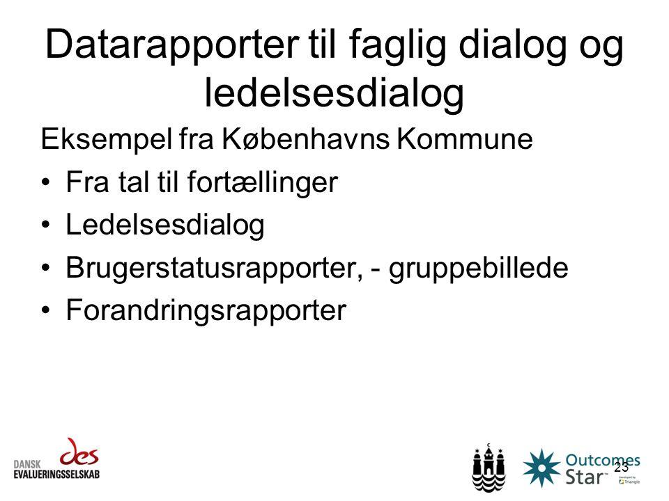 Datarapporter til faglig dialog og ledelsesdialog