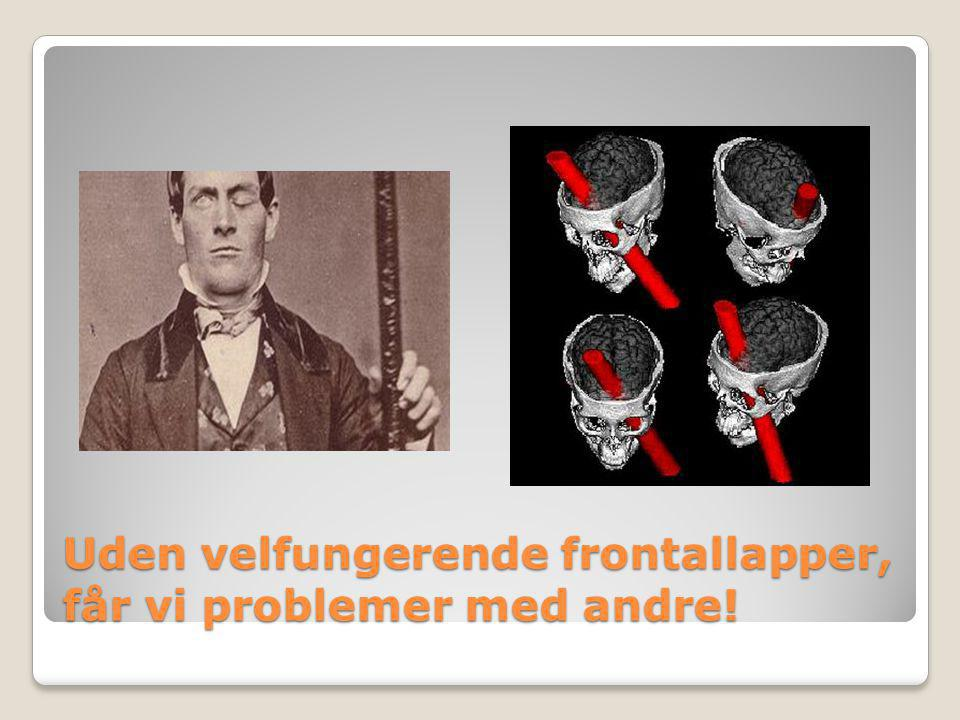 Uden velfungerende frontallapper, får vi problemer med andre!