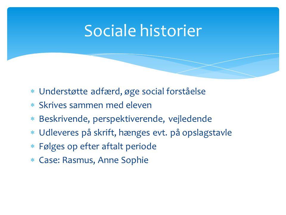 Sociale historier Understøtte adfærd, øge social forståelse