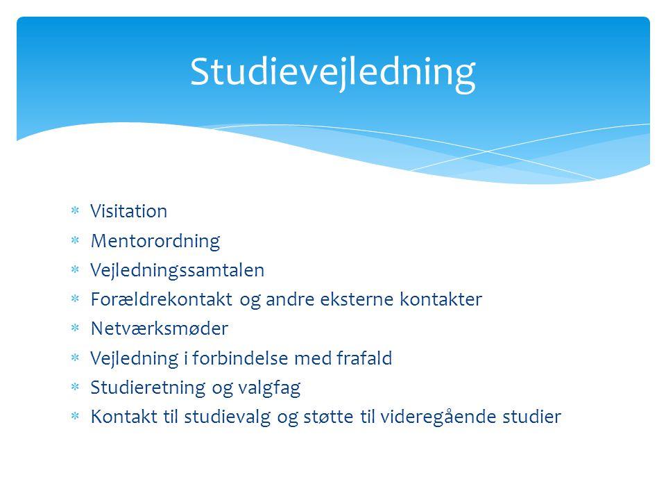 Studievejledning Visitation Mentorordning Vejledningssamtalen