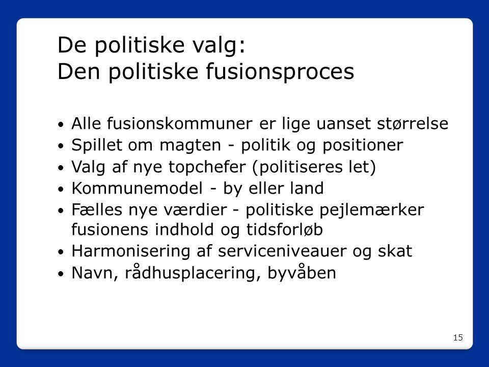 De politiske valg: Den politiske fusionsproces