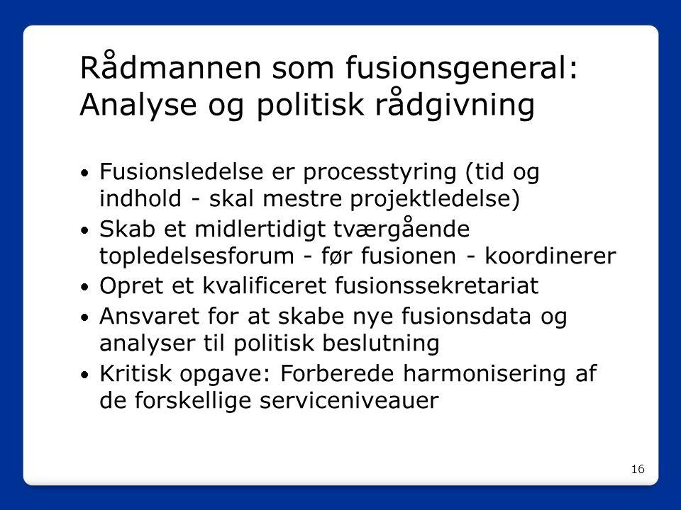 Rådmannen som fusionsgeneral: Analyse og politisk rådgivning