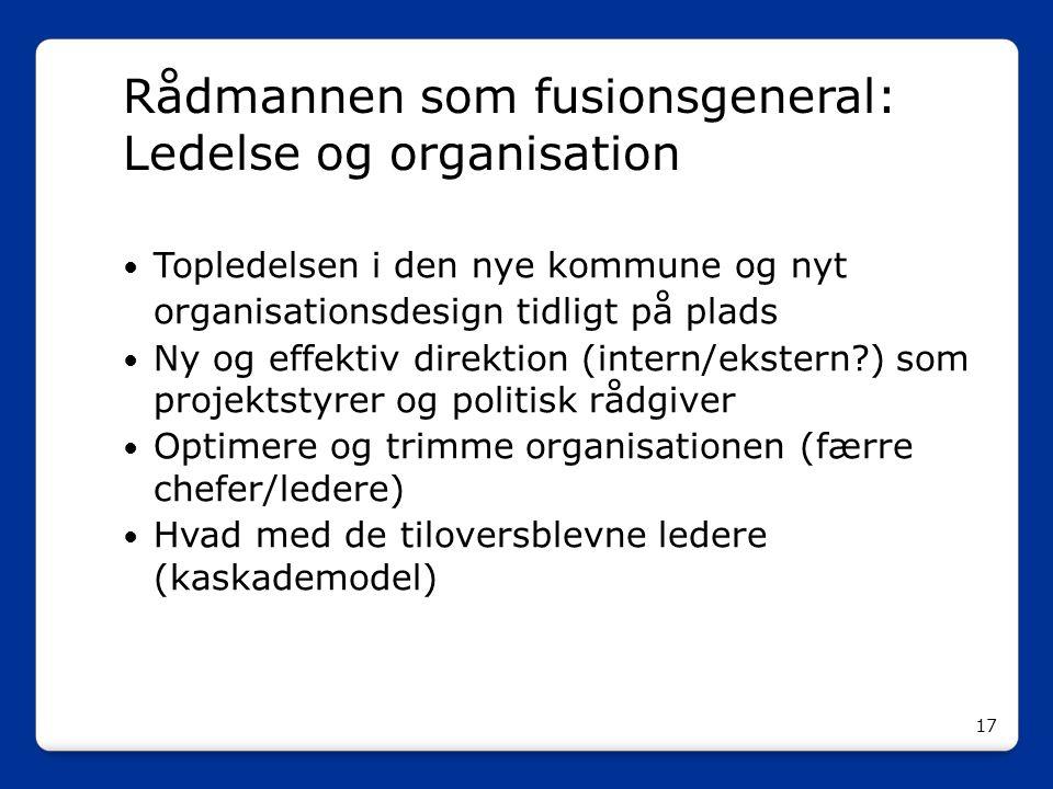Rådmannen som fusionsgeneral: Ledelse og organisation