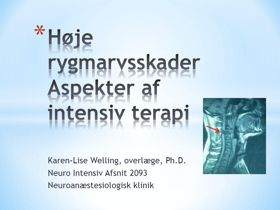 Høje rygmarvsskader Aspekter af intensiv terapi