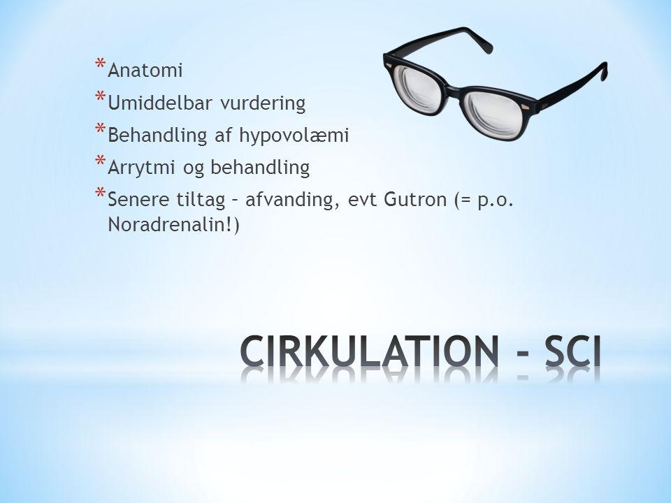 CIRKULATION - SCI Anatomi Umiddelbar vurdering