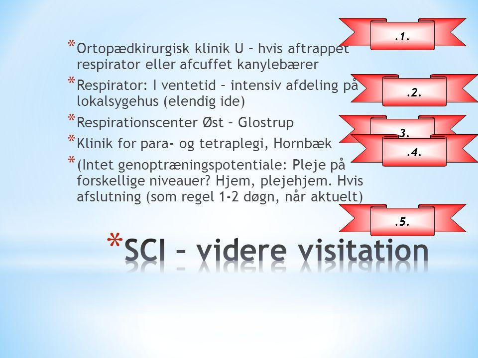 SCI – videre visitation