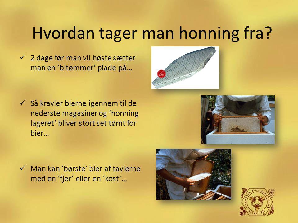 Hvordan tager man honning fra