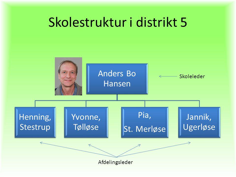 Skolestruktur i distrikt 5