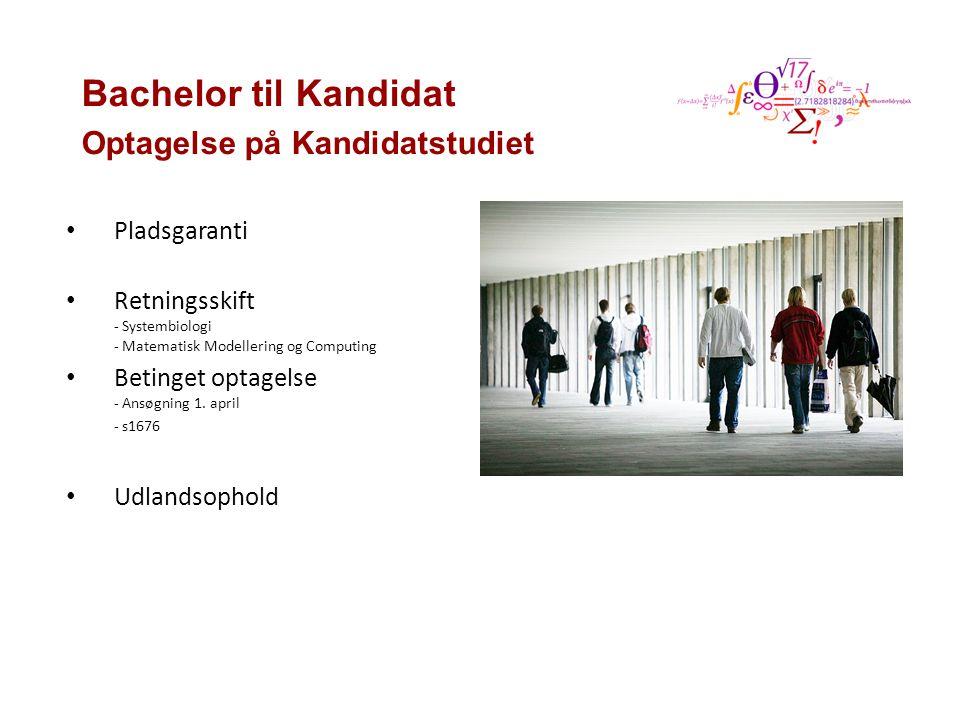 Bachelor til Kandidat Optagelse på Kandidatstudiet Pladsgaranti