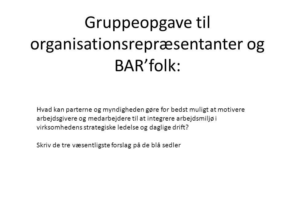Gruppeopgave til organisationsrepræsentanter og BAR'folk: