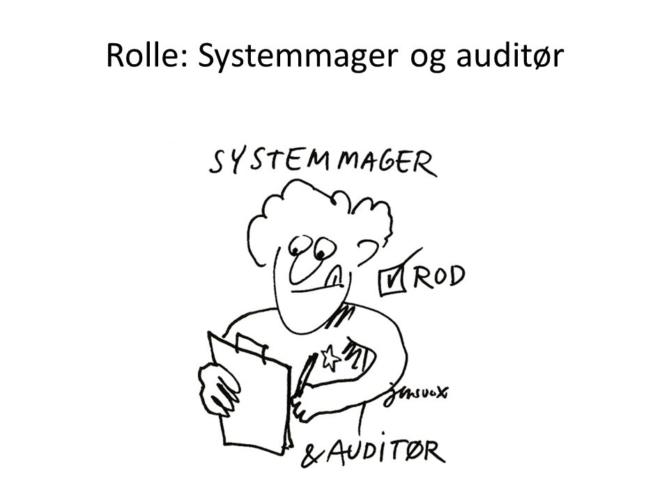 Rolle: Systemmager og auditør