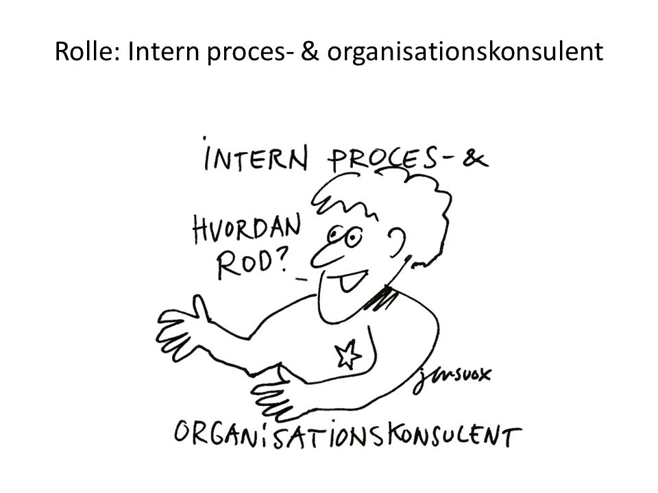 Rolle: Intern proces- & organisationskonsulent