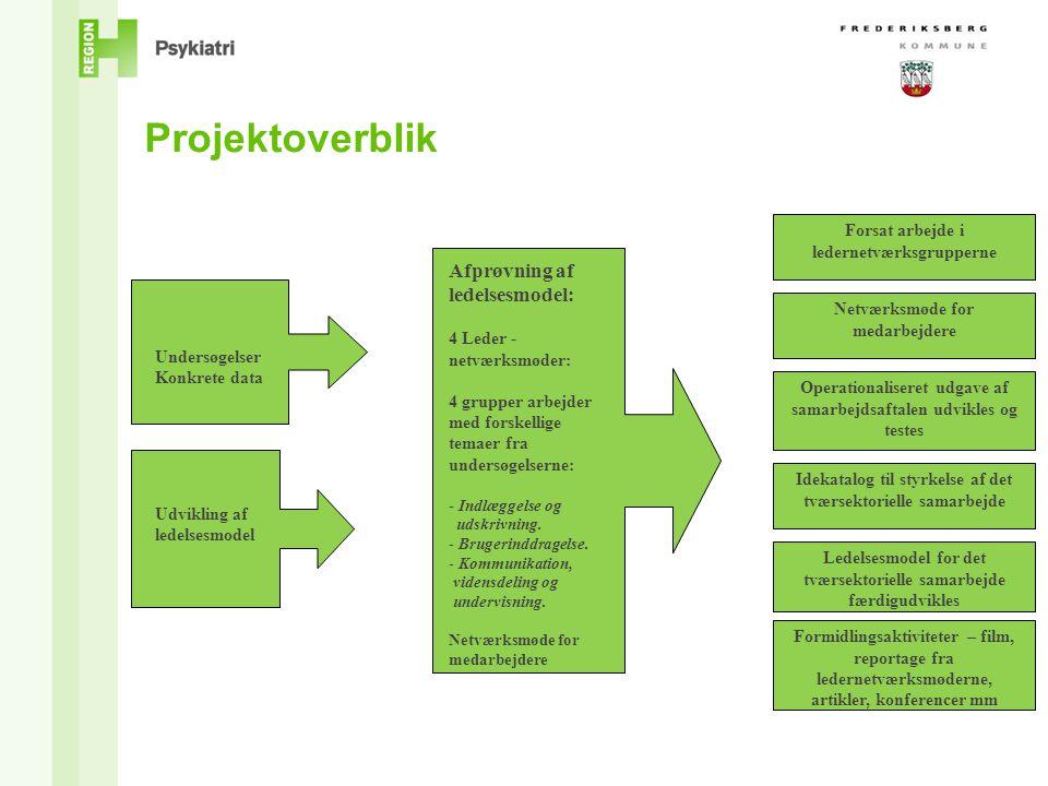 Projektoverblik Afprøvning af ledelsesmodel: