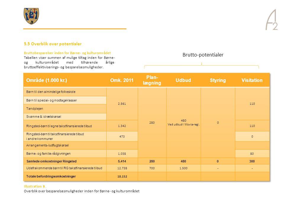 Brutto-potentialer 5.5 Overblik over potentialer Område (1.000 kr.)