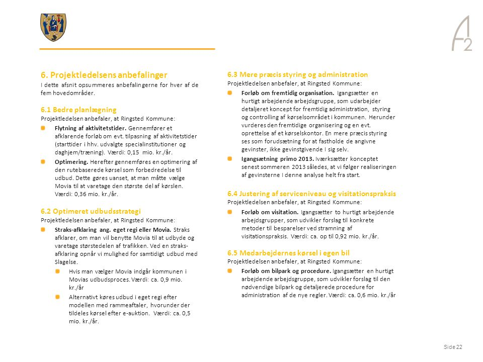 6. Projektledelsens anbefalinger