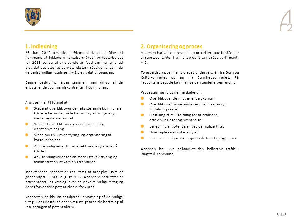 2. Organisering og proces