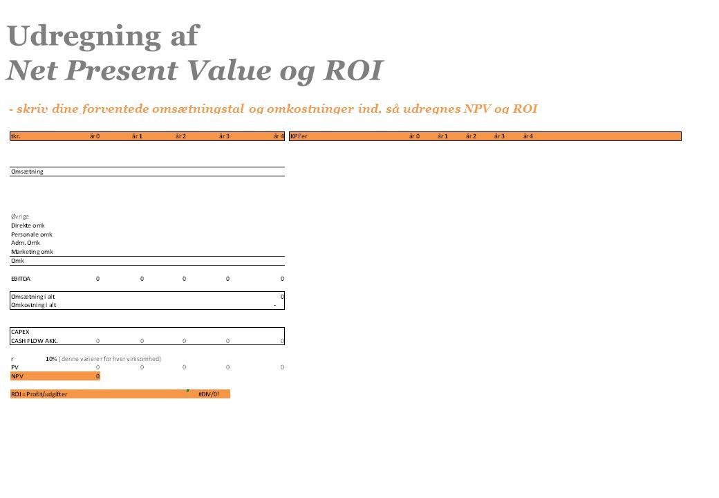 Net Present Value og ROI