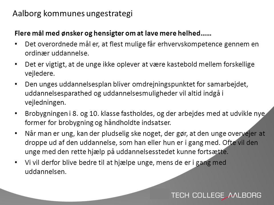 Aalborg kommunes ungestrategi