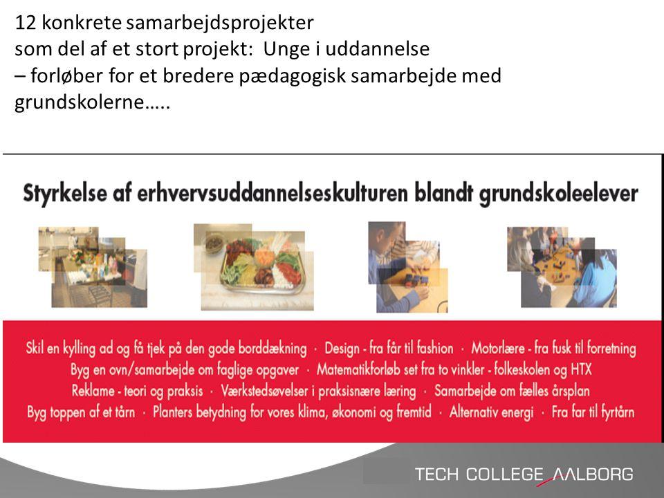 12 konkrete samarbejdsprojekter som del af et stort projekt: Unge i uddannelse – forløber for et bredere pædagogisk samarbejde med grundskolerne…..