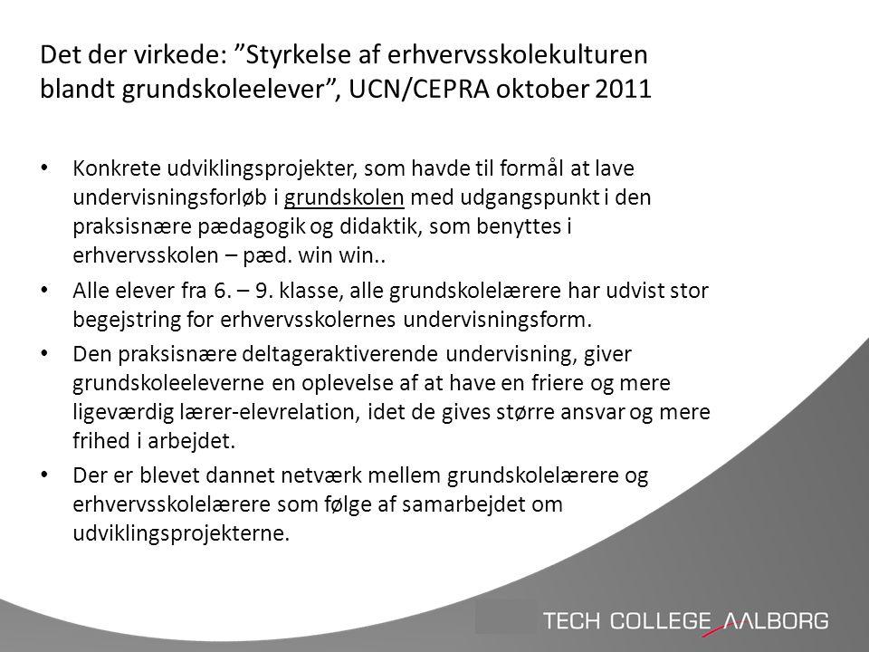 Det der virkede: Styrkelse af erhvervsskolekulturen blandt grundskoleelever , UCN/CEPRA oktober 2011