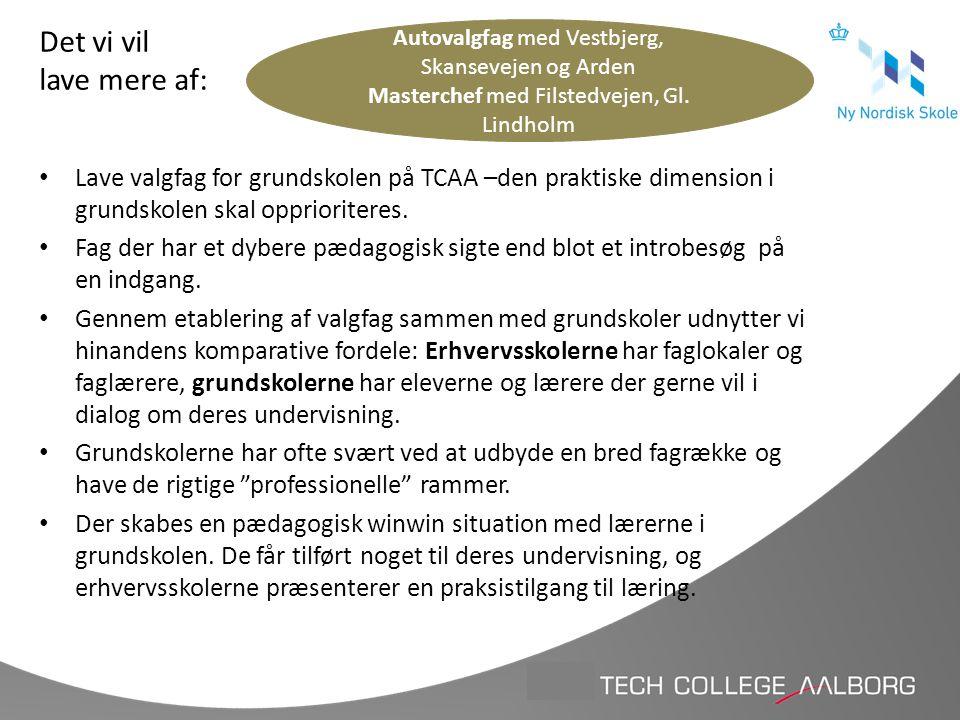 Det vi vil lave mere af: Autovalgfag med Vestbjerg, Skansevejen og Arden. Masterchef med Filstedvejen, Gl. Lindholm.