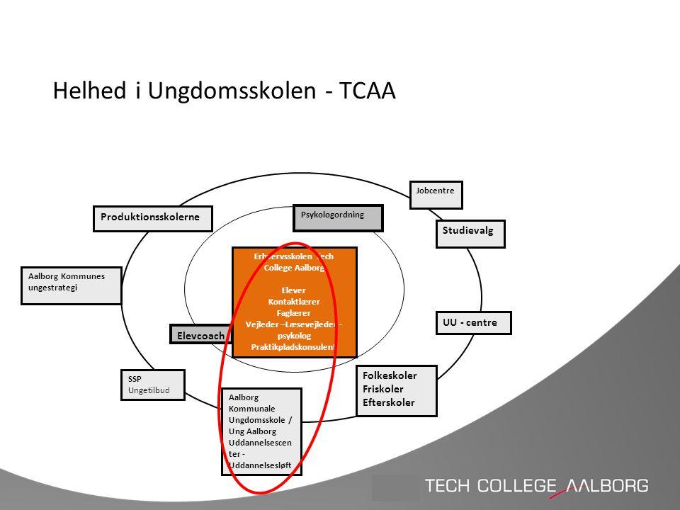 Helhed i Ungdomsskolen - TCAA