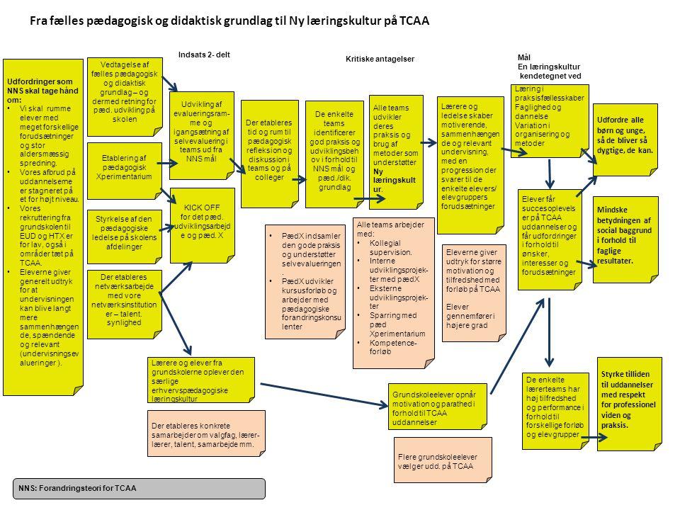 Fra fælles pædagogisk og didaktisk grundlag til Ny læringskultur på TCAA
