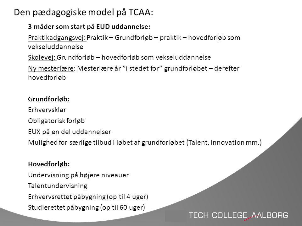 Den pædagogiske model på TCAA:
