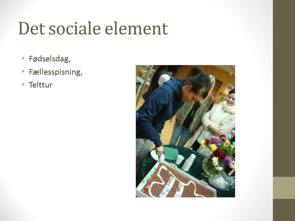 Det sociale element Fødselsdag, Fællesspisning, Telttur