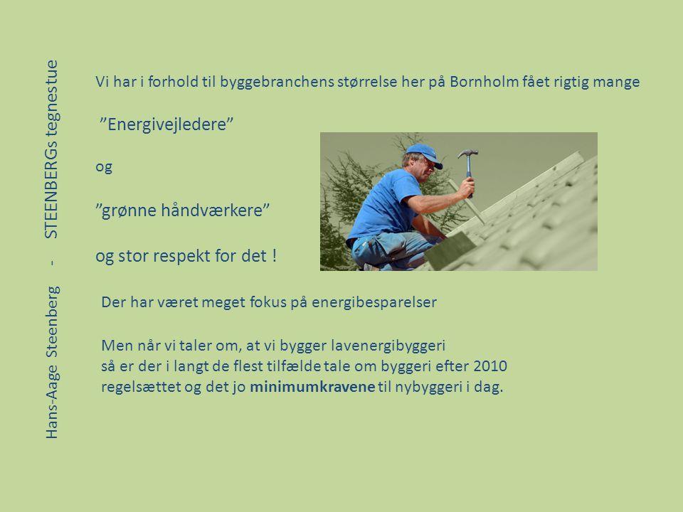Energivejledere grønne håndværkere og stor respekt for det !