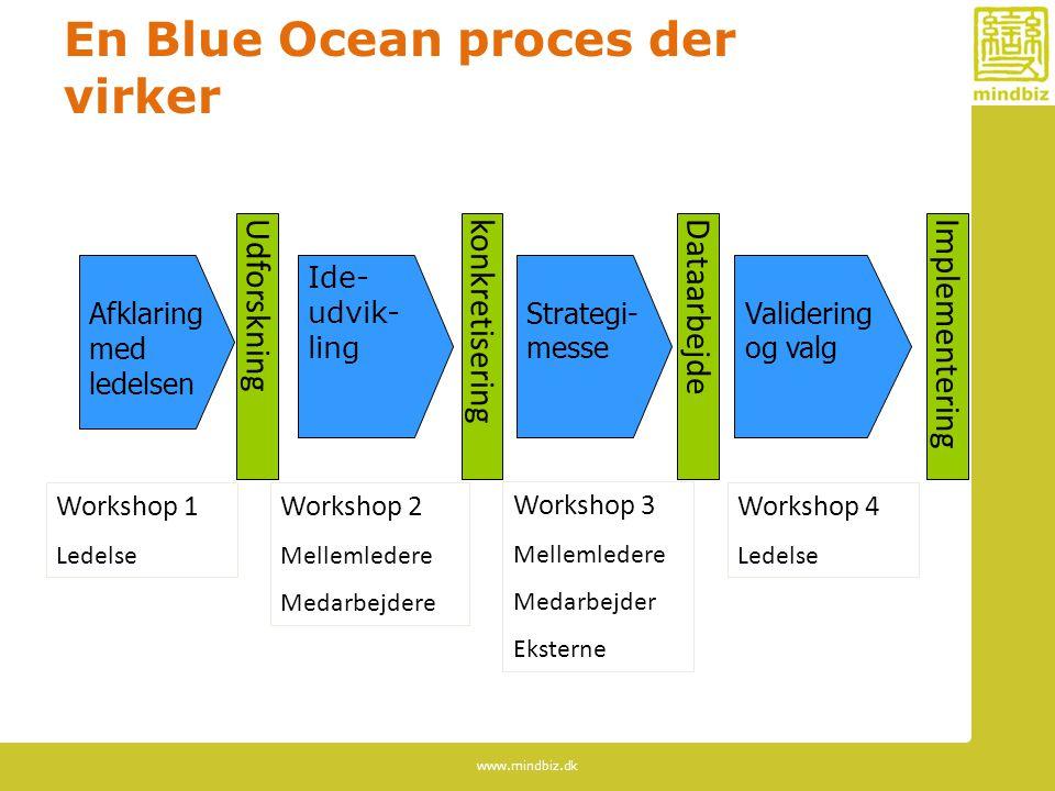 En Blue Ocean proces der virker